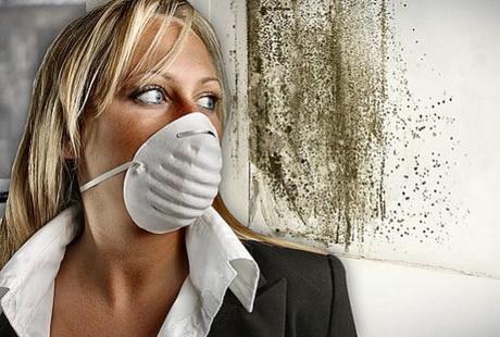 В помещениях утепленных минватой изнутри жить опасно