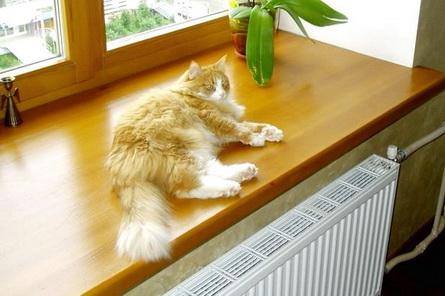 Возле радиатора достаточной мощности всегда тепло