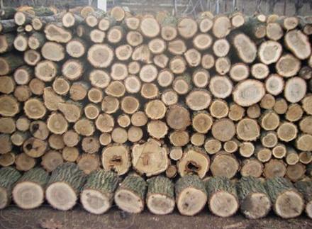 Поленица из крупных дров