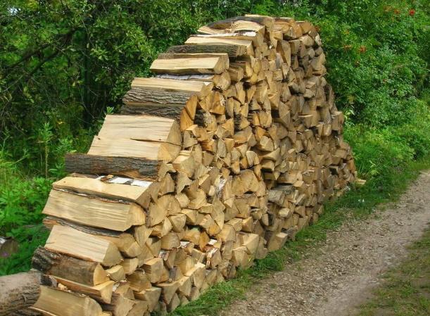 Что выгоднее: газ или дрова, или что-то другое?